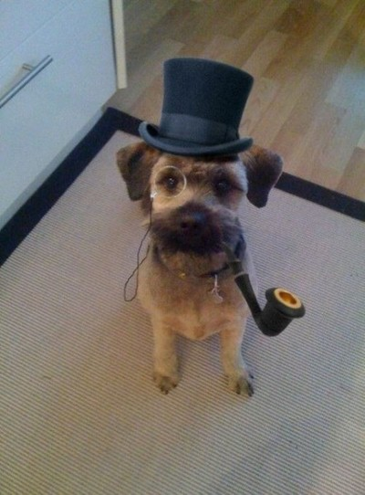 Dog with Top Hat and Monocle